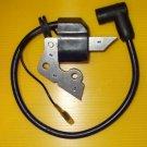Zündspule für ROBIN EY20 EY20-3 EY20D Motore