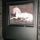 Decorative 360 Night Light In Gift Box : Unicorn  #096