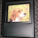 Decorative 360 Night Light In Gift Box : Beagle  #012