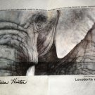 "Pure Art USA Patricia Hunter Print - Elephant  Size:17 3/4"" X 11"""
