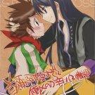 YT26 Tales of Vesperia Doujinshi Yuri x Karole