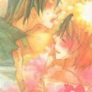 ADULT 18+ Doujinshi HP6 Harry Potter Love Markby Red StrikeBlack x Lupin32 pages