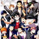 HQ12 Haikyuu! Doujinshi Anthology	All Cast	152 pages