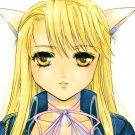 EF21  R18 ADULT DOUJINSHI Full Metal Alchemist ASAPby Fairy PinkRoy x Riza20 pages