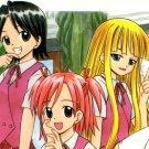 EN28 18+ ADULT DOUJINSHI Negima!?Various Cast32 pages