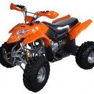 250cc Sport Quad ATV