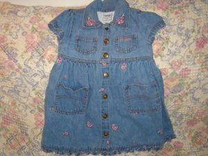 Osh Kosh Oshkosh Ruffled Floral Denim Dress 2T
