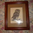 Steve Carter Pen & Ink Print Saw-Whet Owl Framed