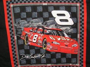 Dale Earnhardt #8 JR Nascar Fabric 2002 Fat Quarter Pillow top