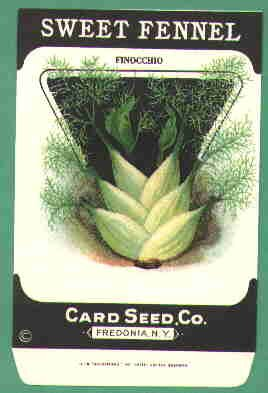 1920's Card seed Company seed packet Sweet Fennel Finocchio