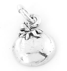 STERLING SILVER FRUIT OF THE SPIRIT-PATIENCE CHARM/PENDANT