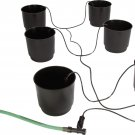 Hydroponic Eco 6 Pack Growing System