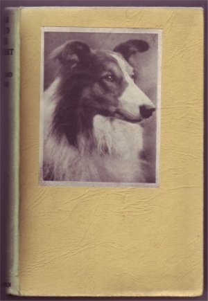 DOGS YOU'D LIKE TO MEET ROWLAND JOHNS 1942 ILLUSTRATED