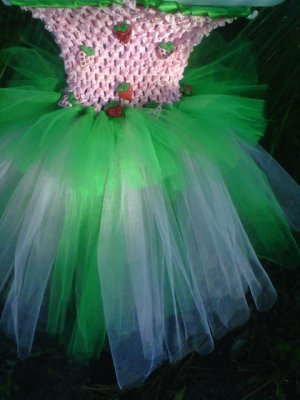 HANDMADE  Lil Diva Inspired  Strawberry Shortcake Tutu Dress