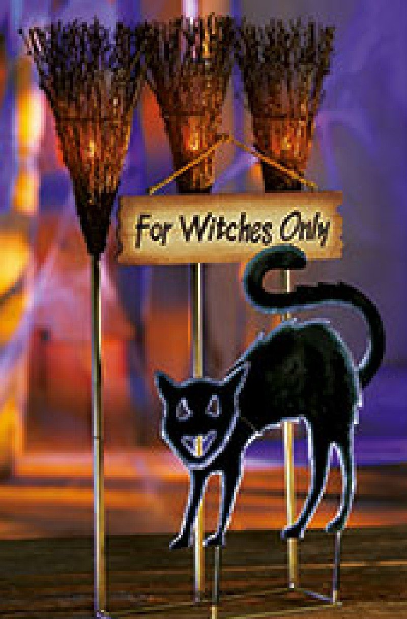 Witches Only Parking Sign black cat  HALLOWEEN NEW MIB