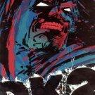 THE DARK KNIGHT STRIKES AGAIN #2 2002 DC COMICS