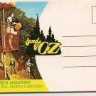 WIZARD OF OZ BEECH MOUNTAIN BANNER ELK NC POSTARD FOLDER