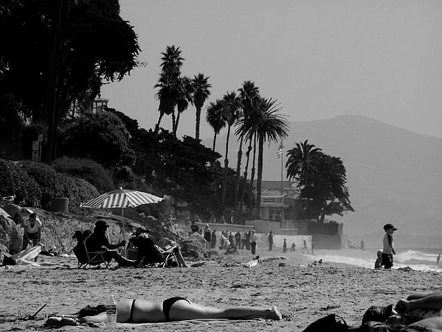 Butterfly Beach - Black and White