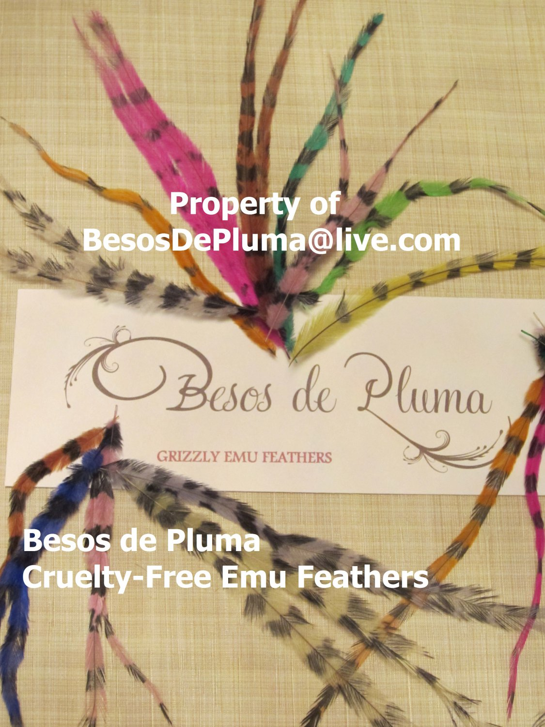 TEN for 6$ Cruelty-Free EMU FEATHERS for Hair Extensions pink-blue-green-orange-purple