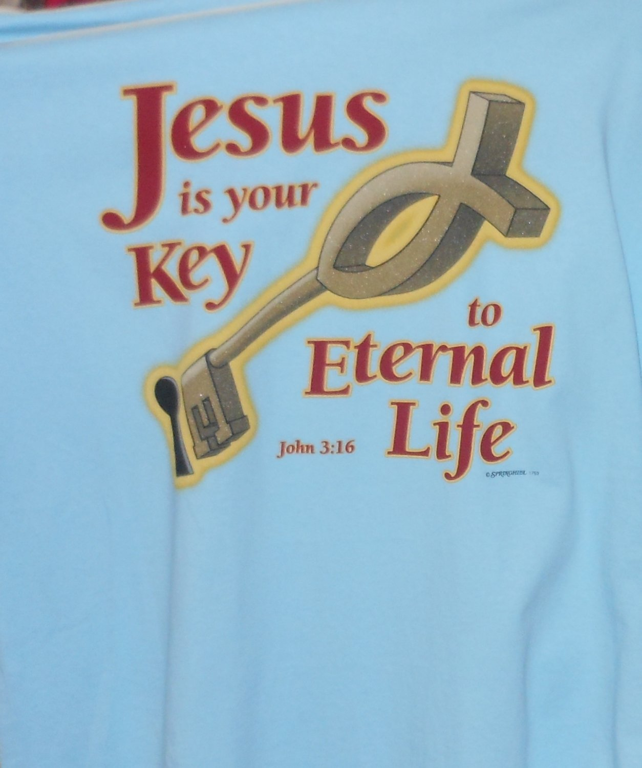 JESUS IS THE KEY LARGE T SHIRT