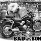 BAD TO THE BONE T-SHIRT BLACK 2X