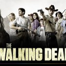 WALKING DEAD T-SHIRT LARGE