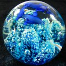The undersea world of luminous balls. The underwater scenery. Small place