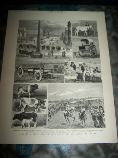 Antique 1882 GRAPHIC South Africa Agriculture Art Print