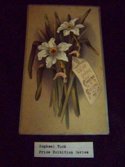 Antique 1880 Chromo Litho CHRISTMAS AMARYLLIS CARD Tuck