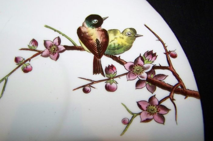 Antique ALFRED B PEARCE Birds Tea Cup Plate Saucer Plate Lot
