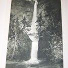 Antique Multnomah Falls~Julian Rix~Photogravure Print