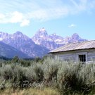 Rustin Cabin at Grand Teton ACEO