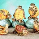 SET OF 6-SEA TURTLES-FIGURINES-DISPLAY-FUN (5562)