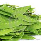 Edible Pod Snow Pea
