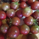 Heirloom cherry tomato lovers variety pack