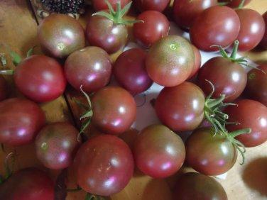 Heirloom cherry tomato lovers variety pack