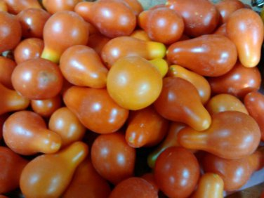 Red Pear cherry tomato 20 seeds