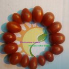 San Marzano tomato RARE heirloom 20 seeds