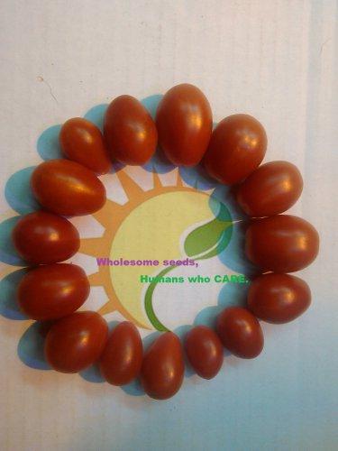 San Marzano tomato RARE heirloom 20 seeds