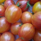Sunrise Bumblebee tomato 20 seeds
