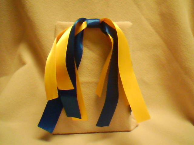 Yellow & Blue Streamer