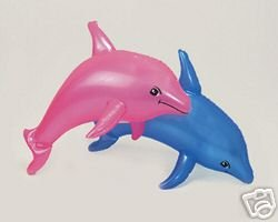 ONE  PINK AND ONE BLUE DOLPHIN