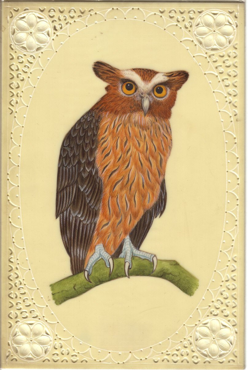 Indian Eagle Owl Art Handmade Nature Wild Life Bird of Prey Miniature Painting