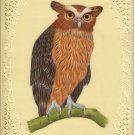Indian Eagle Owl Art Handmade Nature Wild Life Bird of Prey Miniature Painting