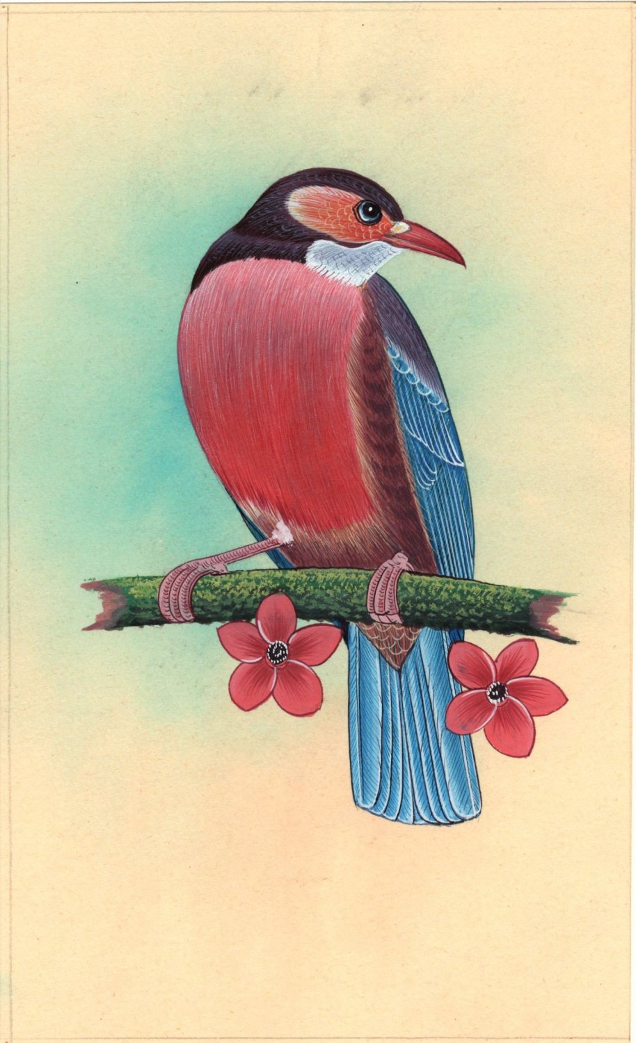 Red Breasted Bird Miniature Painting Handmade Indian Nature Decor Ethnic Art