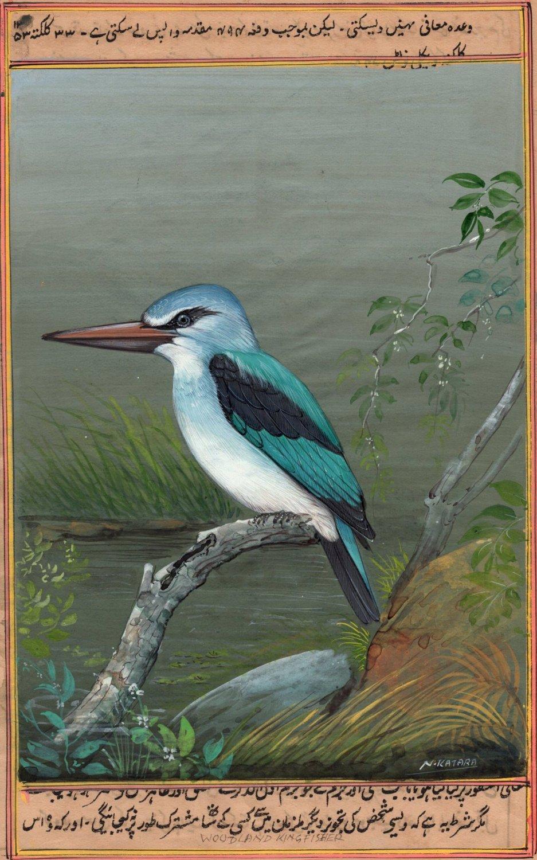 Woodland Kingfisher Bird Miniature Art Handmade Wild Life Ornithology Painting