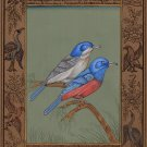 Indian Bird of Paradise Miniature Art Handmade Wild Life Ornithology Painting