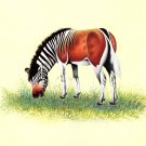 Wild life Zebra Miniature Painting Handmade Indian Ethnic Animal Nature Artwork