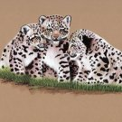 White Bengal Tiger Cubs Painting Hand Painted Wild Life Indian Miniature Art