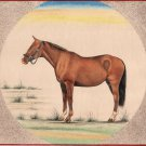 Indian Miniature Equestrian Art Handmade Marwari Horse Stallion Animal Painting